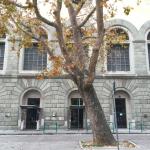 Ingresso pedonale Autostazione di Trieste