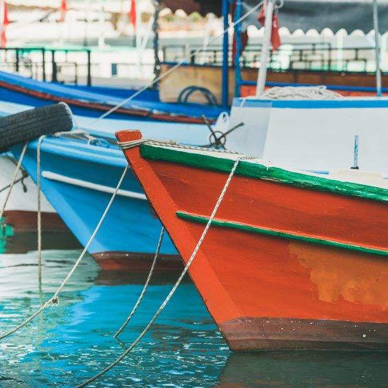 pescherecci nel porto
